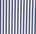 Rayas verticales azules